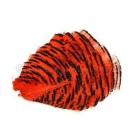WAPSI Golden Pheasant Tippet Section Hot Orange