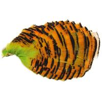 WAPSI Golden Pheasant Tippet Section High Green