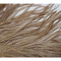 WAPSI Ostrich Plume Tan OP041