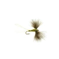 FULLINGMILL Olive Spinner CdC