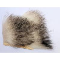 T.O.F. Opossum Americain