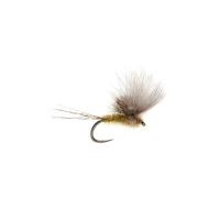 FULLING MILL McPhail CdC Olive Barbless