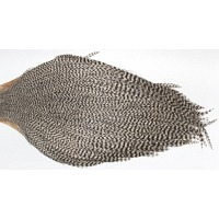 EWING Dry Fly Cape Grizzly
