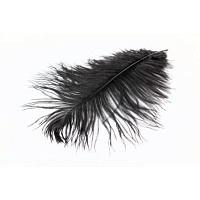 WAPSI Ostrich mini Plumes Black OM100