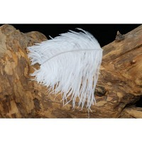 WAPSI Ostrich Herl White OH001