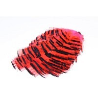 WAPSI Golden Pheasant Tippet Section Fl. Pink