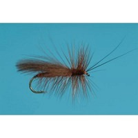 CDC Salmon Fly Adult